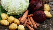 Продам овощи с собственного огорода